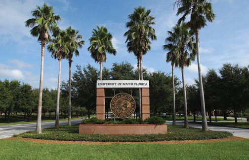 University of South Florida Graduate Industrial Organizational Psychology