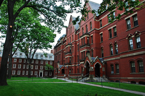 Harvard University Graduate Developmental Psychology
