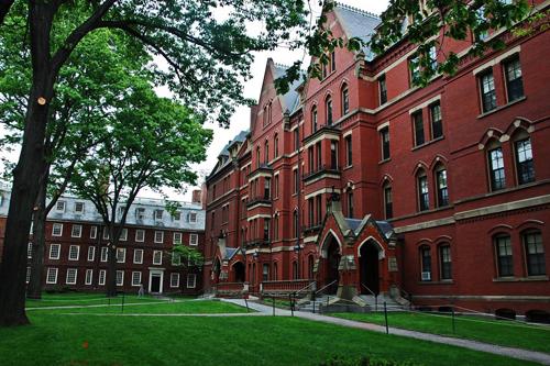 Harvard University Best Value Bachelor's