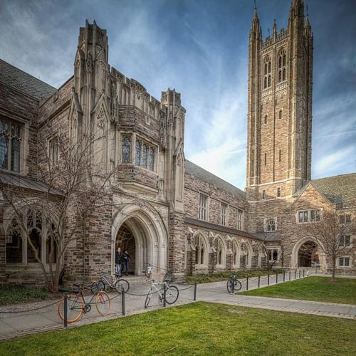 Princeton University Best Value Bachelor's