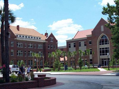 University of Florida Top Public Ivy