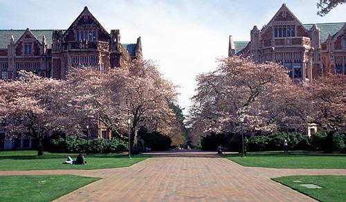 University of Washington Top Public Ivy