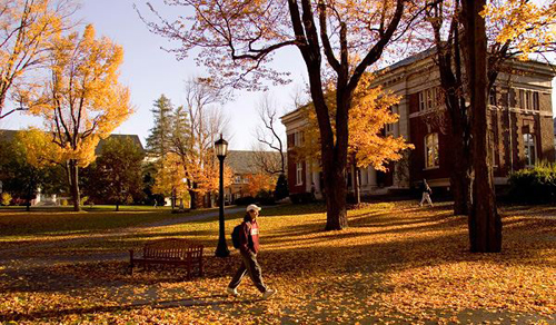 Bates College Best Liberal Arts in Psychology
