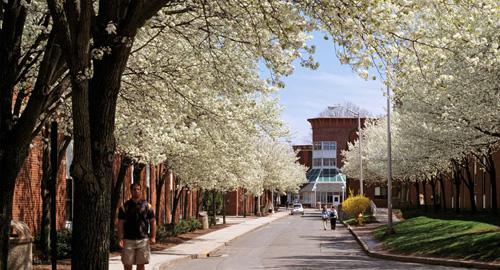 quinnipiac University Top Northern Psychology School