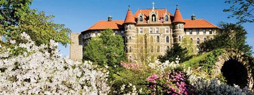 Chestnut Hill College Best PsyD Programs