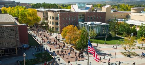 Colorado State University Online Bachelors Degrees in Psychology