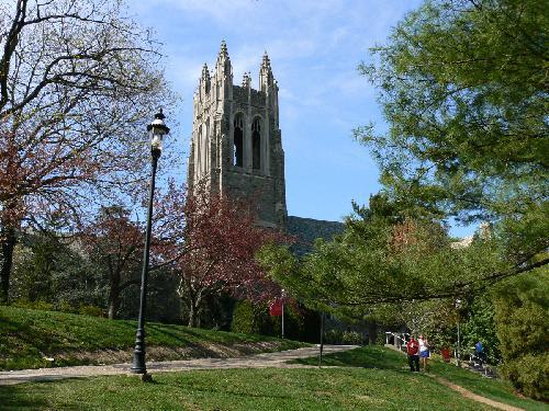 Saint Josephs University Online Masters Degrees in Behavioral Psychology
