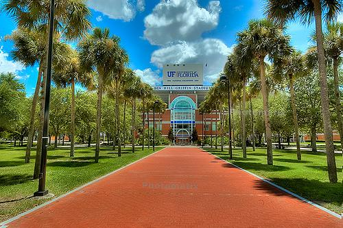 University of Florida Online Bachelors Degrees in Psychology