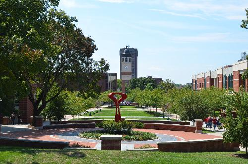 Western Kentucky University Online Masters Degrees in Child Psychology