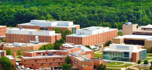 Wright State University Online Masters Degrees in Addiction Studies