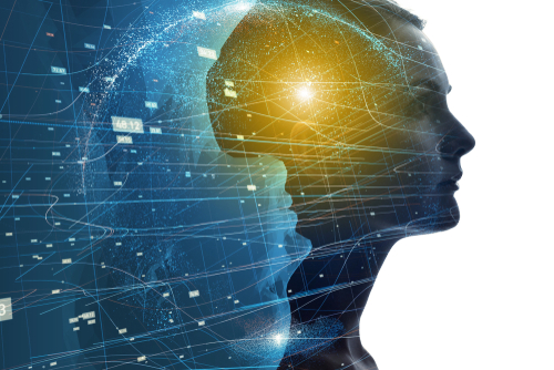 What Can I Do With a Bachelor's Degree in Psychology