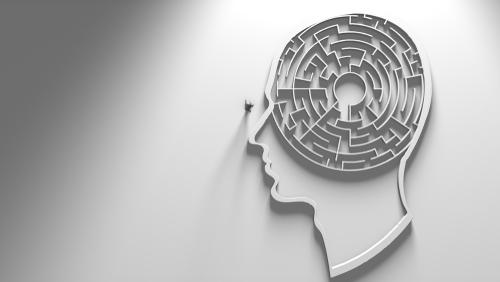 behavioral neuroscience graduate programs ranking